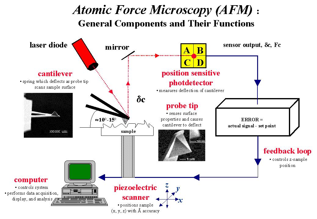 عملکرد میکروسکوپ نیروی اتمی