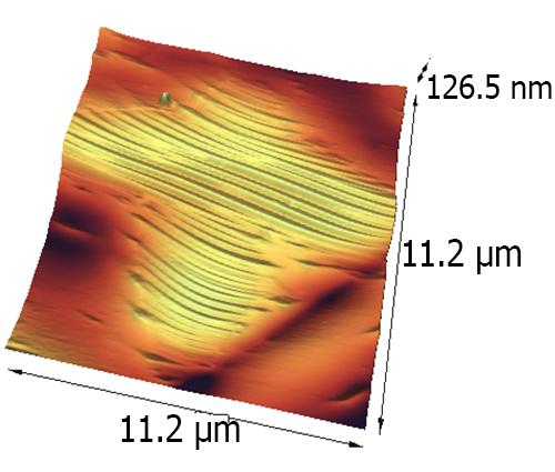 تصاویر گرفته شده توسط نانوسکوپ اتمی آرا پژوهش