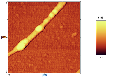 DNA sample AFM gallery,AFM,Atomic force microscopy