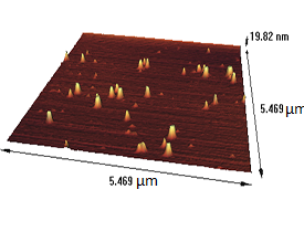 Gold nanoparticle on micasubstrate Atomic force microscopy sample
